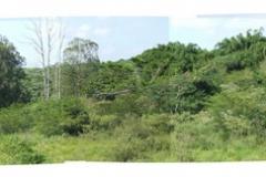 02_Flusspanorama_Sicht-vom-Grundstück
